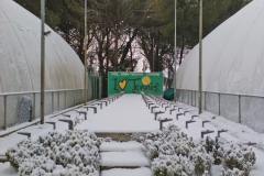 Inverno in Polisportiva 2000
